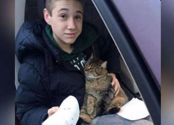 Из мчащегося по мосту фургона выбросили кота, подросток немедленно бросился на помощь животному 😲🙏💝