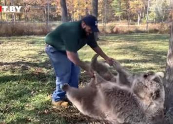 Медведица узнала человека, который заботился о ней в детстве: очень трогательное видео